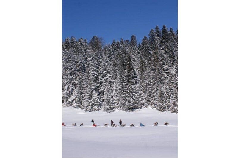 Winter_2020_My_Way
